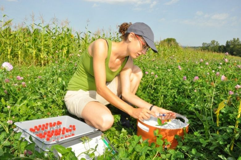Woman measures soil gas in clover grass plots