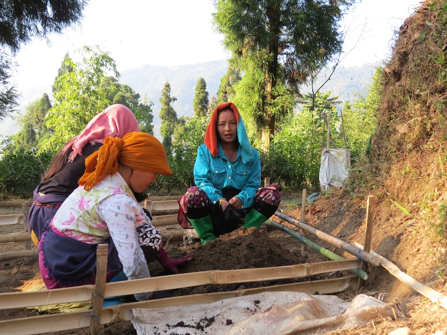 Many small farmers are women in the Asian countries.
