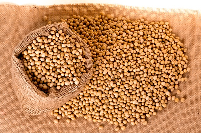 Soybeans are an important ingredient for many manufacturers.