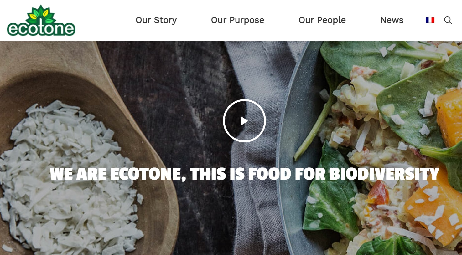 Screenshot of the new Ecotone website