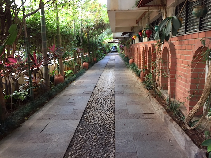 The green path to the Green Path Eco-Hotel in Bangalore.