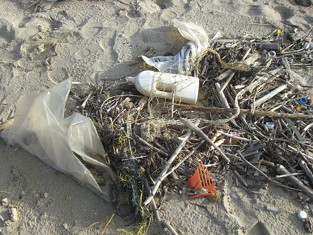 Plastic waste at a coast. Photo © Pixaby