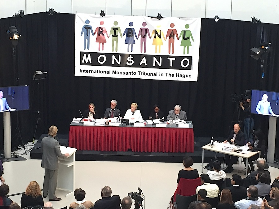 The Monsanto Tribunal is asking in the similar direction to make corporations responsible for the ecocide they are accused for.